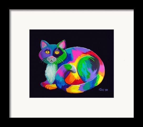 Rainbow Calico Framed Print By Nick Gustafson