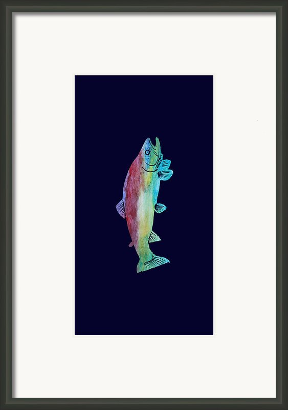 Rainbow Trout Framed Print By Jenny Armitage