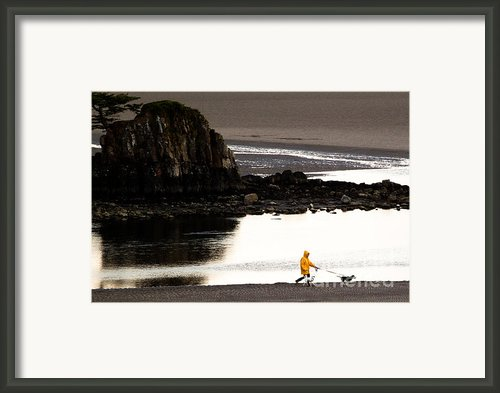Raincoat Dog Walk Framed Print By John Daly
