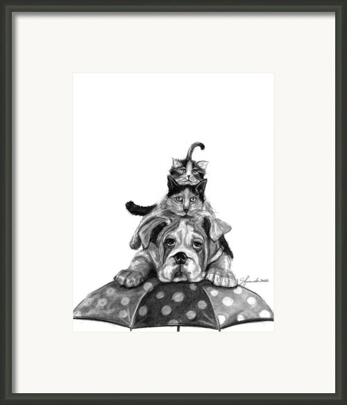 Raining Cats And A Dog Framed Print By J Ferwerda