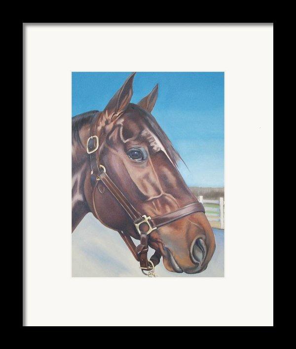 Ranger Commission Framed Print By Steve Messenger
