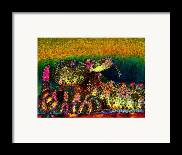 Rattlesnake 20130204p0 Framed Print By Wingsdomain Art And Photography