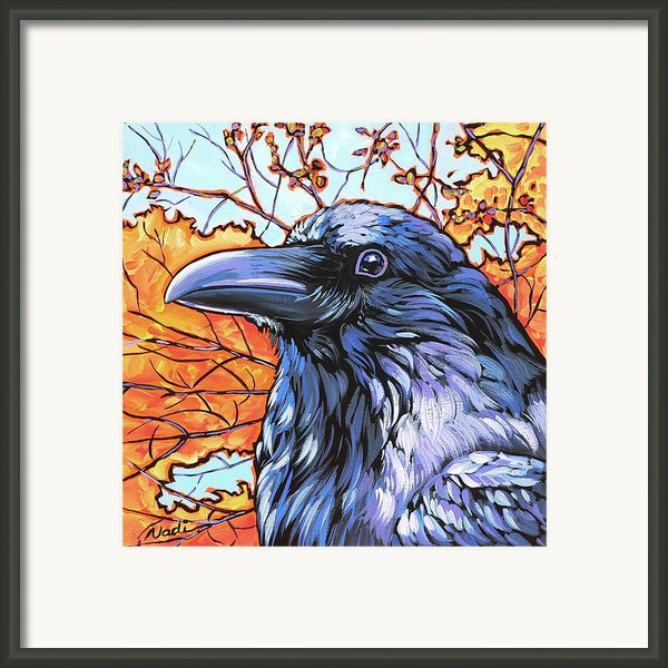 Raven Head Framed Print By Nadi Spencer