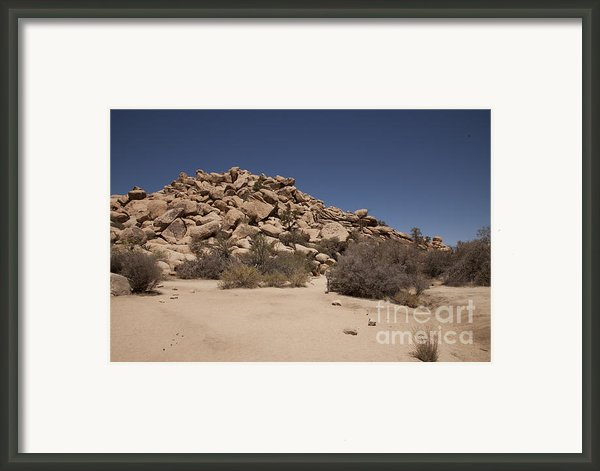 Real  Framed Print By Amanda Barcon