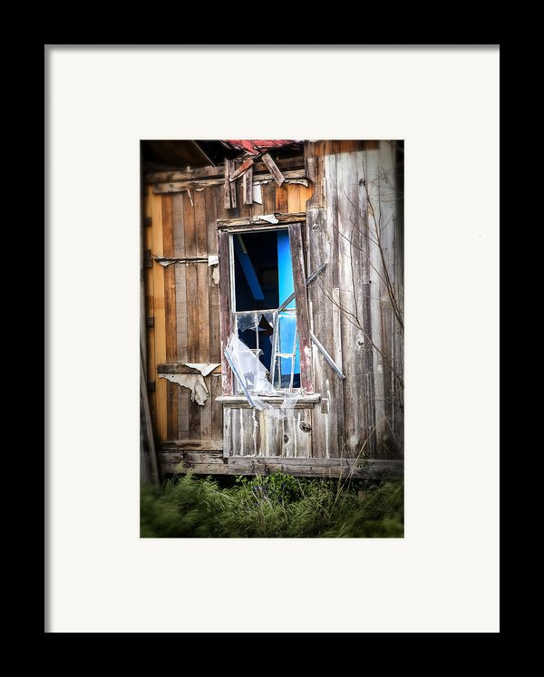 Red And White And Blue Framed Print By Caitlyn  Grasso