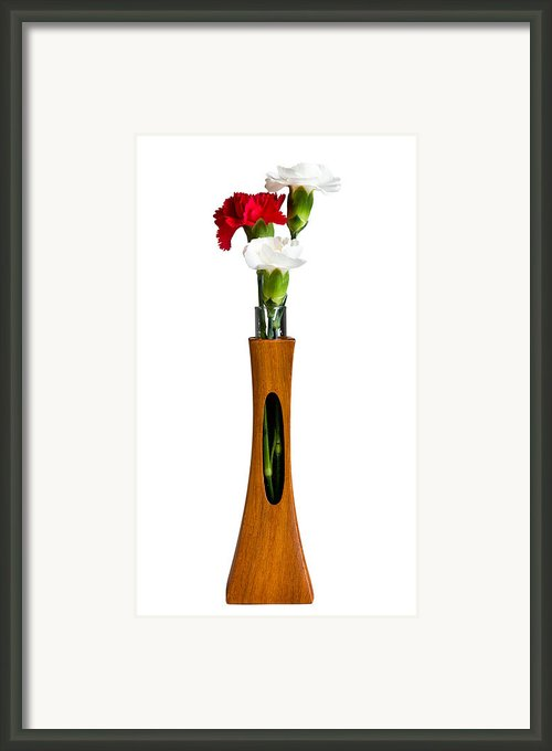 Red And White Spray Carnations In Teak Vase Framed Print By Steve Heap