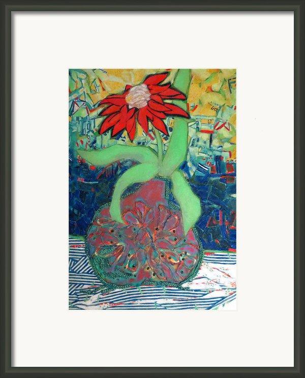 Red Diasy Framed Print By Diane Fine