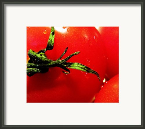 Red Hot Tomato Framed Print By Karen Wiles