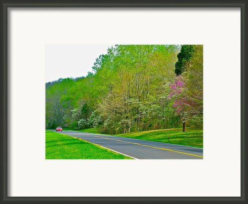 Redbud And Dogwood In Spring At Mile 363 Of Natchez Trace Parkway-tn Framed Print By Ruth Hager