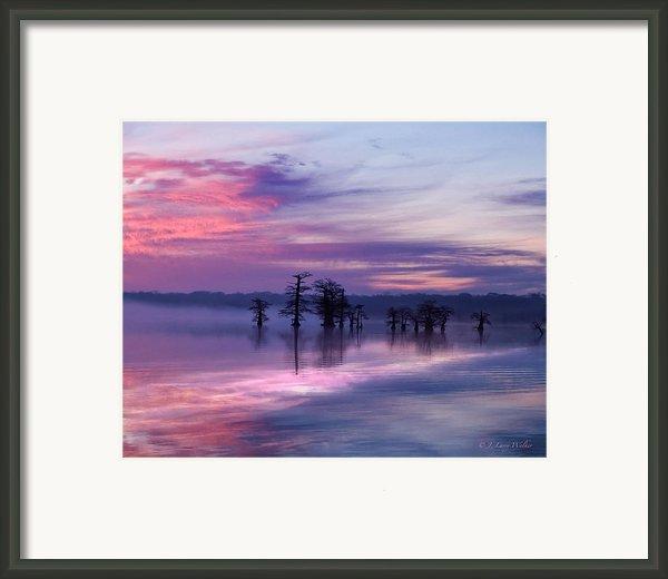 Reelfoot Lake Sunrise Framed Print By J Larry Walker