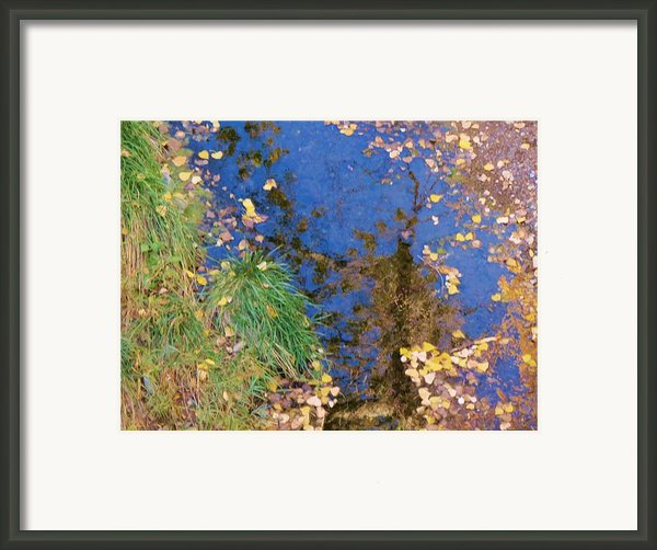 Reflections Of Fall Framed Print By Feva  Fotos