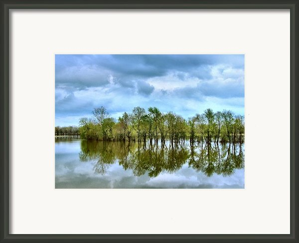 Reflections Of Spring Framed Print By Julie Dant