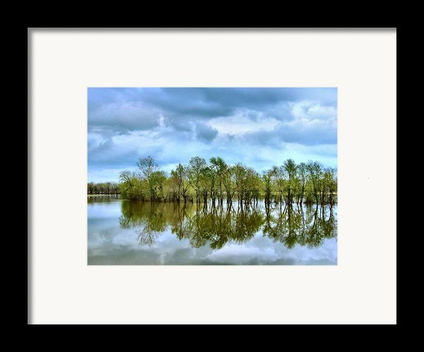 Reflections Of Spring Framed Print By Julie Dant