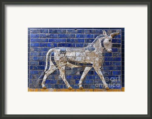 Relief From Ishtar Gate In Babylon Framed Print By Robert Preston