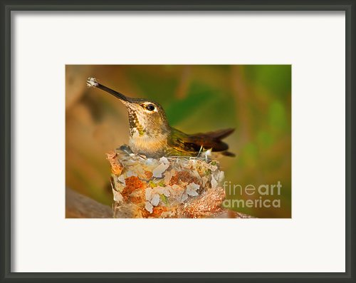 Repairing  Framed Print By Robert Bales