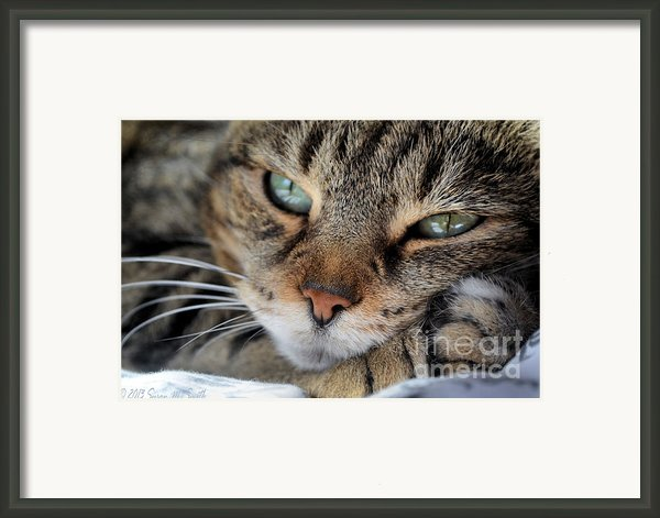 Rest Framed Print By Susan Smith