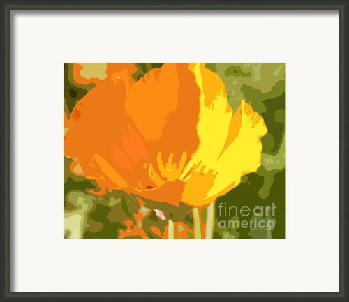 Retro Abstract Poppies 2 Framed Print By Author And Photographer Laura Wrede