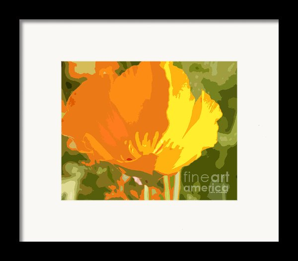 Retro Abstract Poppies 2 Framed Print By Artist And Photographer Laura Wrede