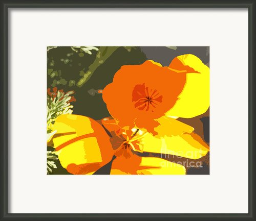 Retro Abstract Poppies Framed Print By Author And Photographer Laura Wrede