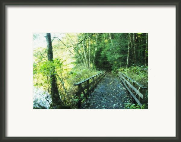 Rice Lake In North Vancouver Framed Print By Marlene Ford