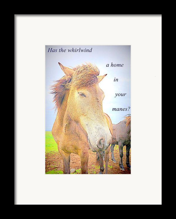 Riding The Whirlwind Framed Print By Hilde Widerberg