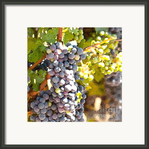 Ripe Grapes Framed Print By Artist And Photographer Laura Wrede