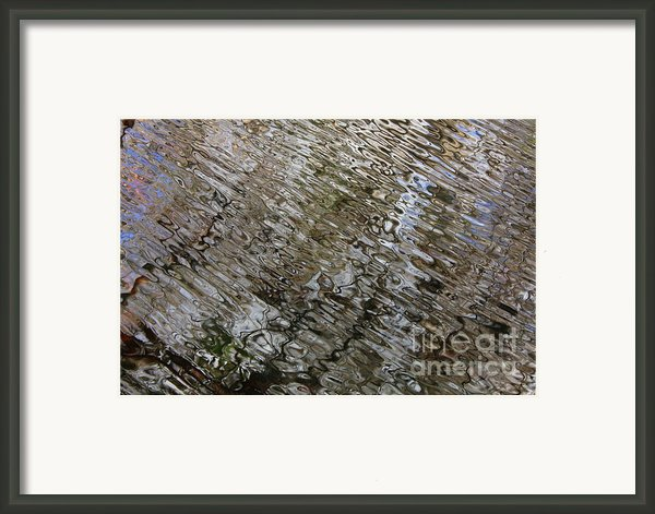 Ripples In The Swamp Framed Print By Carol Groenen