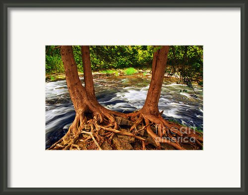River Framed Print By Elena Elisseeva