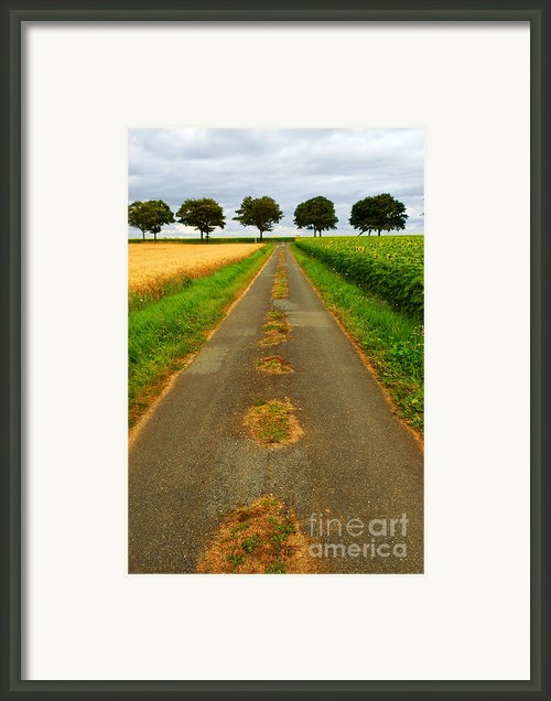Road In Rural France Framed Print By Elena Elisseeva