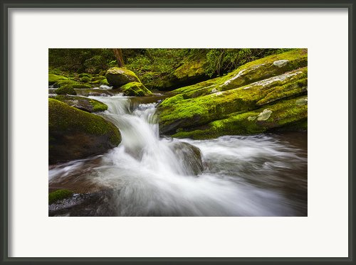 Roaring Fork Great Smoky Mountains National Park Cascade - Gatlinburg Tn Framed Print By Dave Allen