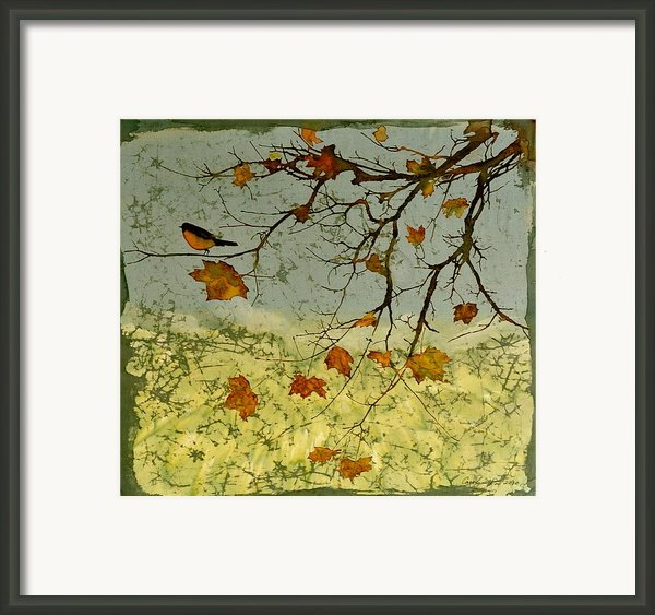 Robin In Maple Framed Print By Carolyn Doe