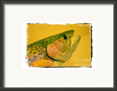 Rock Creek Rainbow Framed Print By Lauren Hunter