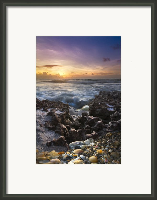 Rocky Shore Framed Print By Debra And Dave Vanderlaan