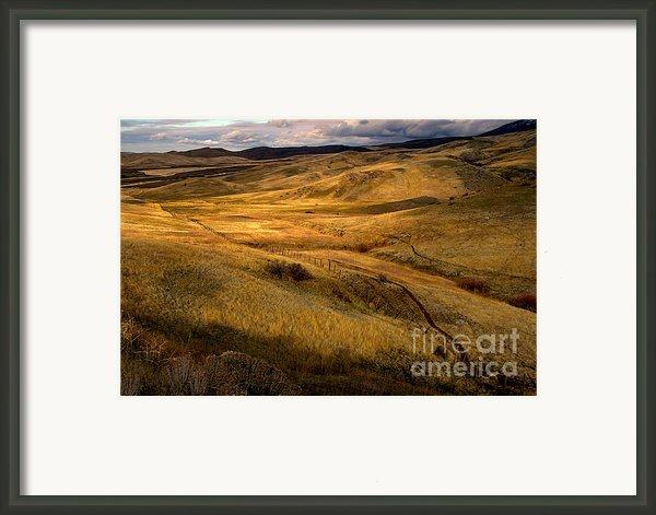 Rolling Hills Framed Print By Robert Bales