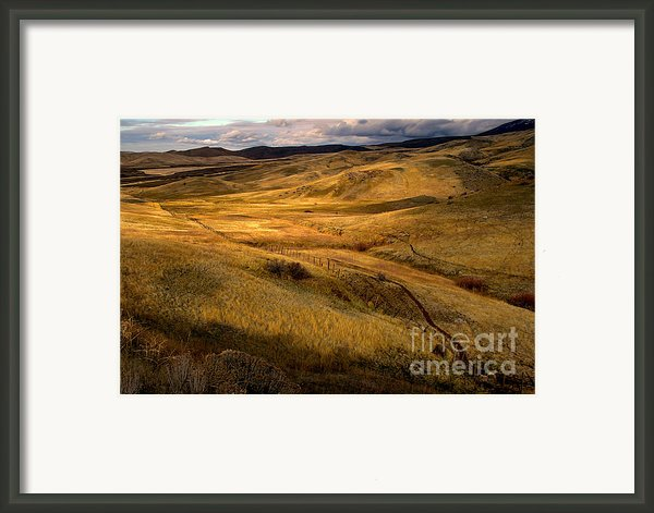 Rolling Hills Framed Print By Robert Bales