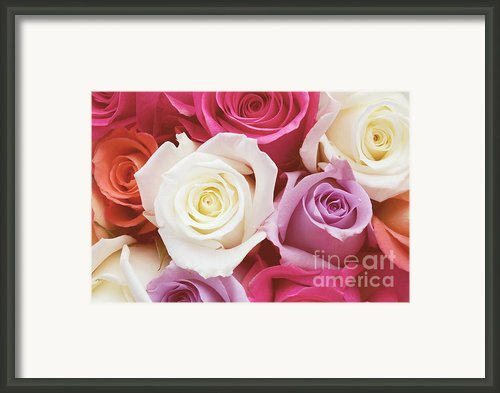 Romantic Rose Garden Framed Print By Kim Fearheiley