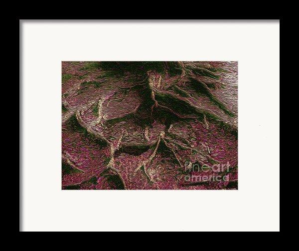 Roots Of Fantasy Framed Print By R Mclellan