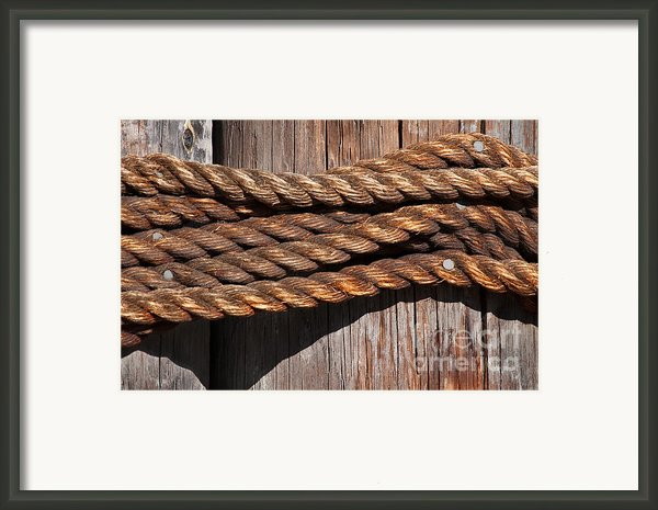Roped Framed Print By Dan Holm