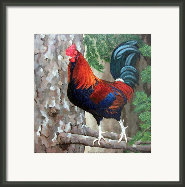 Roscoe The Rooster Framed Print By Sandra Chase