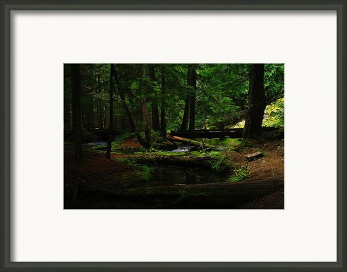 Ross Creek Montana Framed Print By Jeff  Swan