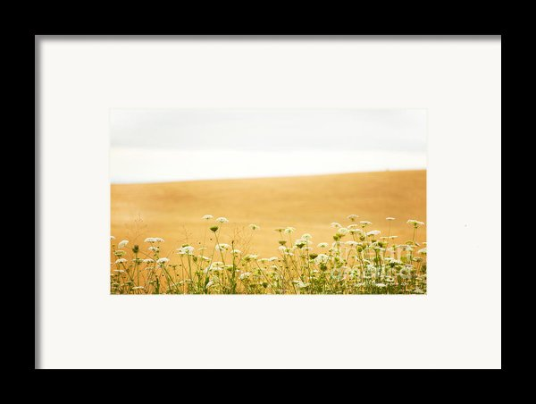 Run With Me Through A Field Of Wild Flowers Framed Print By Artist And Photographer Laura Wrede