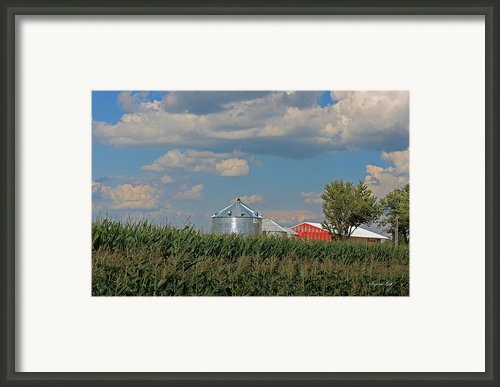 Rural Indiana Scene - Adams County Framed Print By Suzanne Gaff