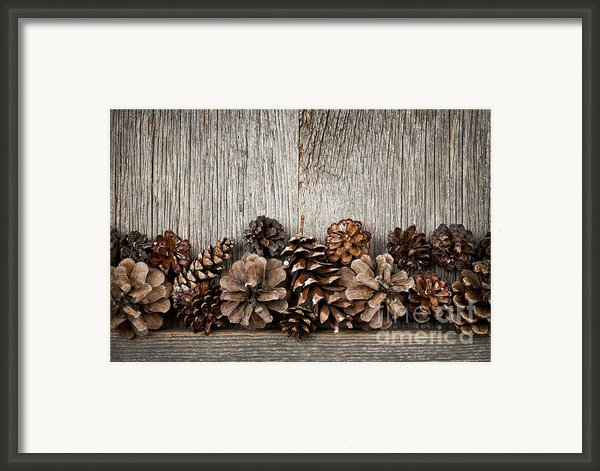 Rustic Wood With Pine Cones Framed Print By Elena Elisseeva