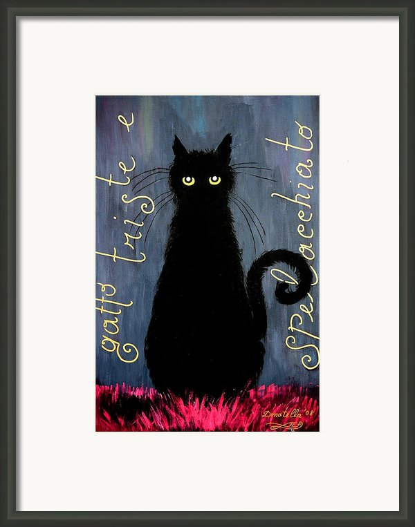 Sad And Ruffled Cat Framed Print By Donatella Muggianu