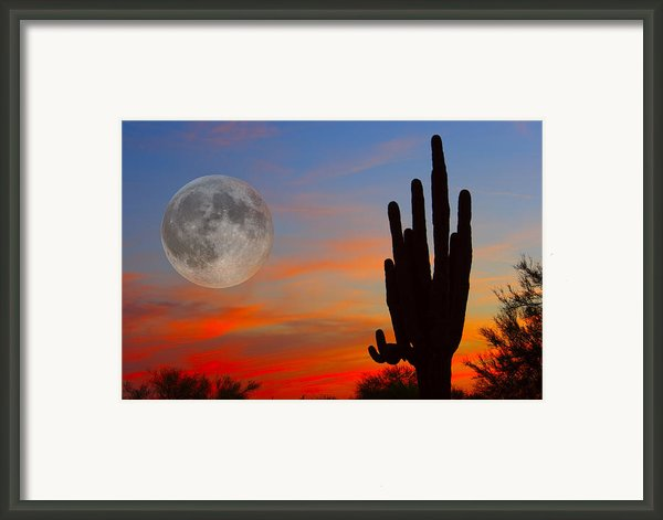 Saguaro Full Moon Sunset Framed Print By James Bo  Insogna