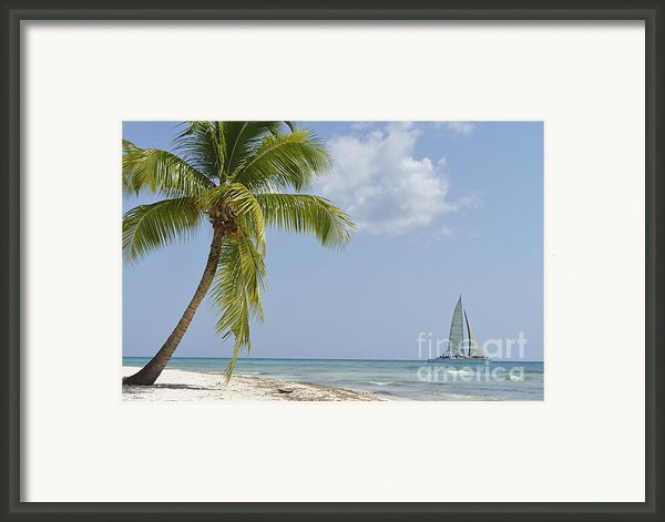 Sailboat Passing By Tropical Beach Framed Print By Sami Sarkis