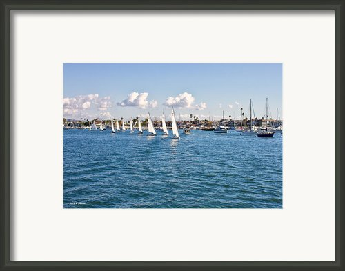 Sailing Framed Print By Angela A Stanton