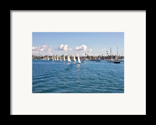 Sailing Framed Print By Angela A Stanton