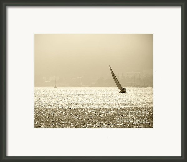 Sailing In San Diego Harbor Framed Print By Artist And Photographer Laura Wrede
