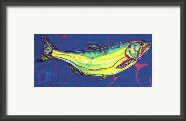 Salmon Of Knowledge Framed Print By Derrick Higgins